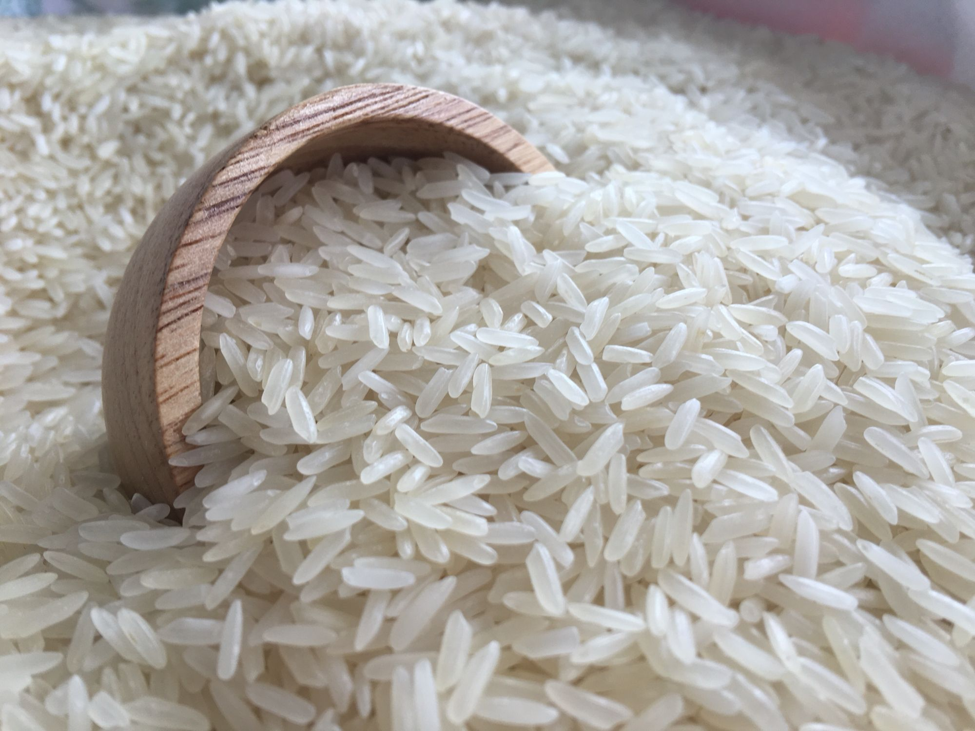 Rice suppliers, importers, exporters | Berium Group